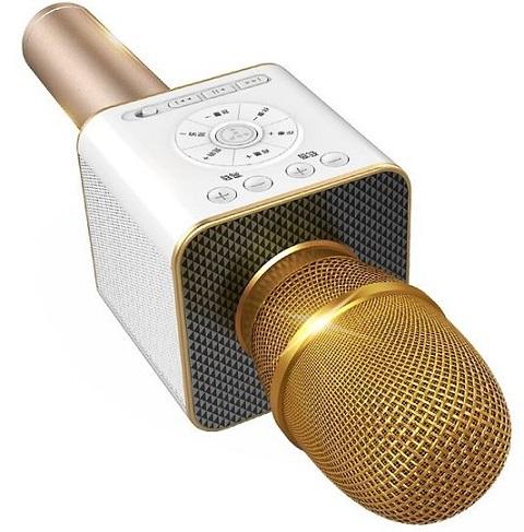 Micro karaoke Bluetooth Tosing